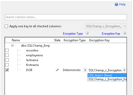 Configure Always Encrypted on existing table with data Always Encrypted step 5